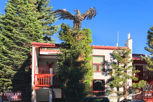 Tyrolean Lodge - Downtown Aspen