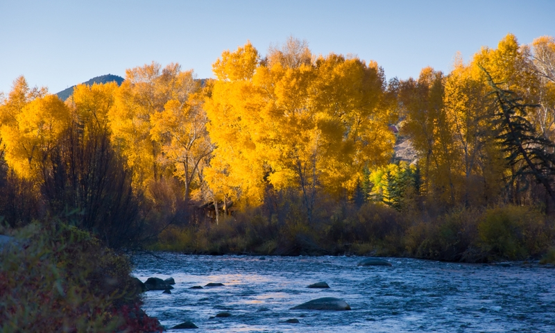 Roaring Fork River Carbondale Colorado