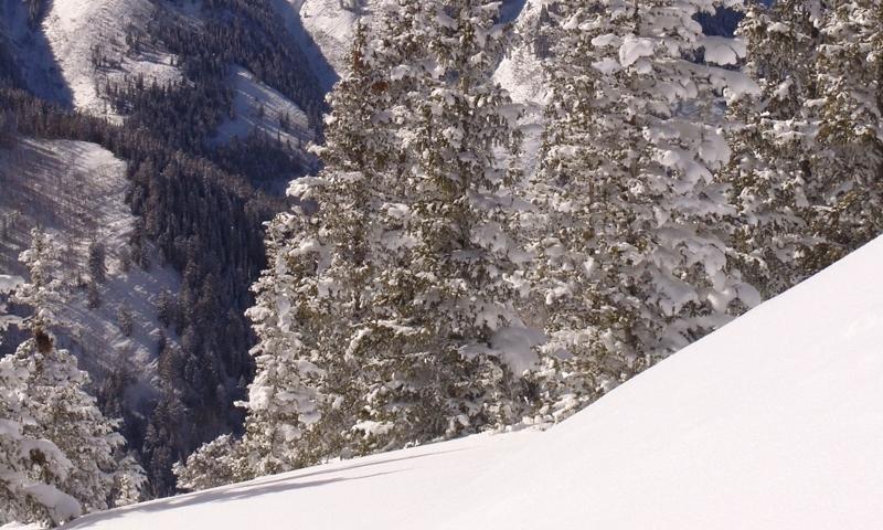 Looking down a ski run at Aspen Mountain