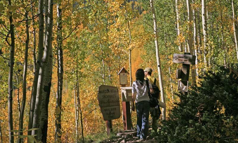 Hiking Trail near Aspen Colorado