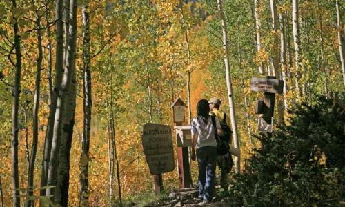 Hiking Trail near Aspen Colorado