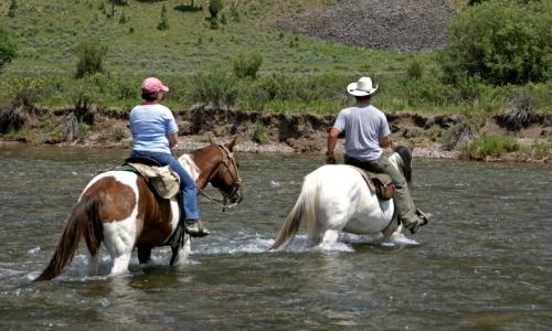 Aspen Horseback Riding Horse Trail Rides Alltrips