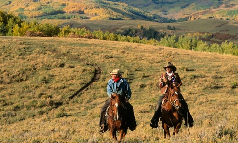 Aspen Colorado Hunting