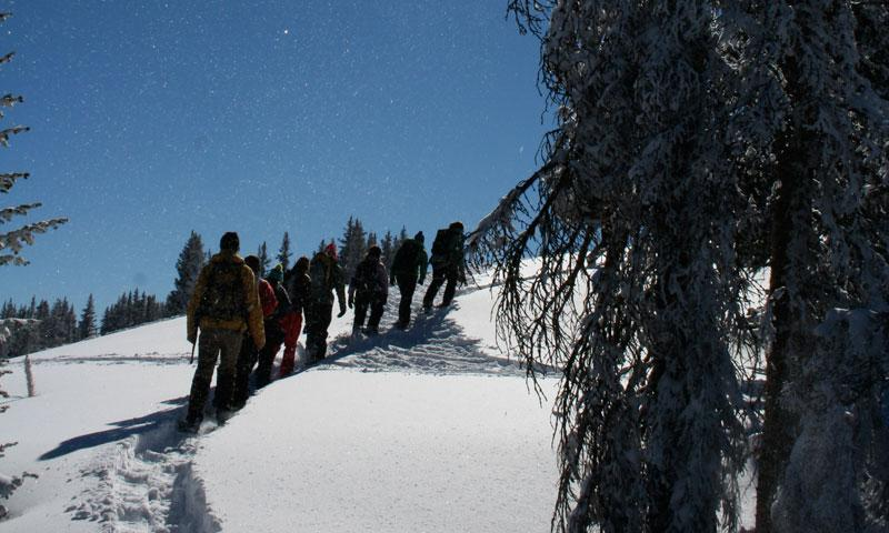 Snowshoeing Tour in Aspen Colorado